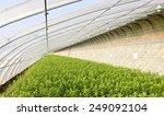 beautiful greenhouses  | Shutterstock . vector #249092104
