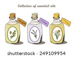 health and nature collection....   Shutterstock .eps vector #249109954
