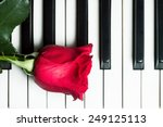 Red Rose Lying On Piano...