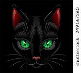 black cat portrait  | Shutterstock .eps vector #249167260