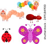 isolated insect vectors ...   Shutterstock .eps vector #249184900