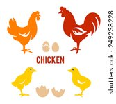 vector illustration of rooster  ... | Shutterstock .eps vector #249238228