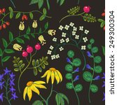 vector background with flowers... | Shutterstock .eps vector #249300304