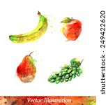watercolor fruits. vector... | Shutterstock .eps vector #249422620