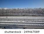 Snowy Railroad With Trees Along ...
