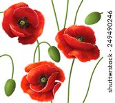 seamless pattern with red poppy ... | Shutterstock .eps vector #249490246