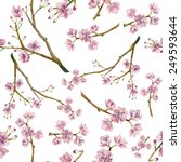 watercolor sakura pattern.... | Shutterstock .eps vector #249593644