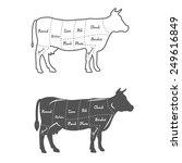 detailed illustration  diagram  ... | Shutterstock .eps vector #249616849