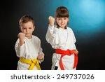 karate martial arts | Shutterstock . vector #249737026