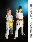 karate martial arts | Shutterstock . vector #249737050