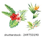 floral set with hibiscus, exotic flowers and leaves