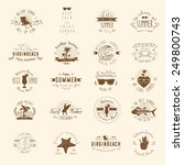 vintage badges for summer... | Shutterstock .eps vector #249800743