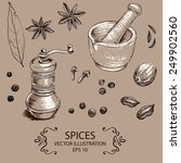 spices set. hand drawn vector... | Shutterstock .eps vector #249902560