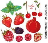 vector set with pomegranate ... | Shutterstock .eps vector #250021828