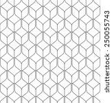 black and white geometric... | Shutterstock .eps vector #250055743