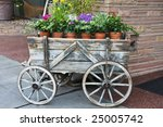 Flowers In Terracotta Pots For...