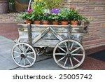 Flowers In Terracotta Pots For...
