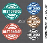best choice 100  guarantee icon ... | Shutterstock .eps vector #250127209
