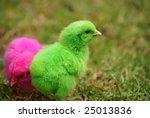 easter   Shutterstock . vector #25013836