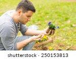 gardener planting flowers | Shutterstock . vector #250153813