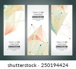 vertical banners set with... | Shutterstock .eps vector #250194424