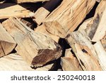 Dry Chopped Firewood Logs In A...