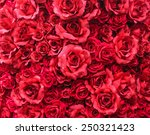 Stock photo close up soft focus group of red color petal roses background for wedding ceremony decorate 250321423