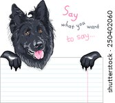 vector dog belgian shepherd dog ... | Shutterstock .eps vector #250402060