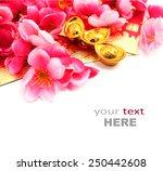 shoe shaped gold ingot  yuan... | Shutterstock . vector #250442608