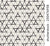 seamless pattern. modern... | Shutterstock .eps vector #250476958