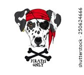 illustration of doggy pirate | Shutterstock .eps vector #250624666