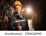 Miner In The Mine