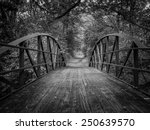 A Black And White Image Of A...