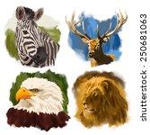 Animals Hand Drawn Vector Heads ...