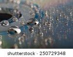 Water Droplets On Cd. Macro...