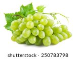 Green Grapes With Leaves....