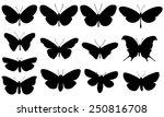 set of different butterflies... | Shutterstock .eps vector #250816708