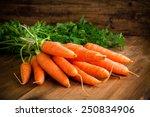 Fresh carrots bunch on rustic...