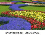 Multicolored Flower Bed ...