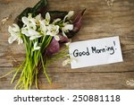 bouquet of the first spring... | Shutterstock . vector #250881118