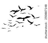 silhouette a flock of birds | Shutterstock .eps vector #250887148