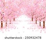 cherry blossom background | Shutterstock .eps vector #250932478