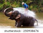 Big Elephant Bathing In The...