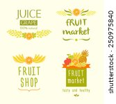 set vector logo for a store of... | Shutterstock .eps vector #250975840