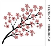 blossoming branch. hand drawing ... | Shutterstock .eps vector #250987558
