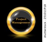 project management icon.... | Shutterstock .eps vector #251011918