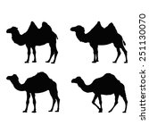 Vector File Of Camel Silhouette