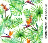 tropical leaves and exotic... | Shutterstock . vector #251220010