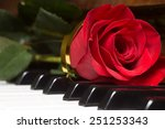 Red Beautiful Rose On Piano...