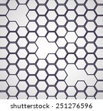 abstract  hexagon backgrounds 2d | Shutterstock .eps vector #251276596